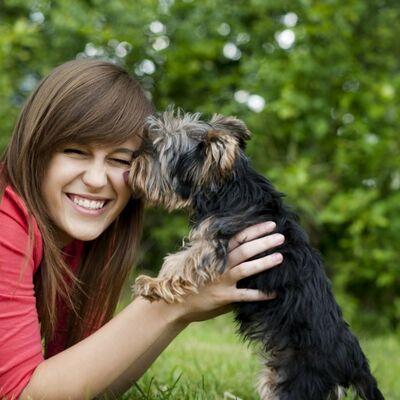 Psi nikada ne umiru, samo spavaju u vašim srcima: Dirljive reči koje će vas raznežiti!