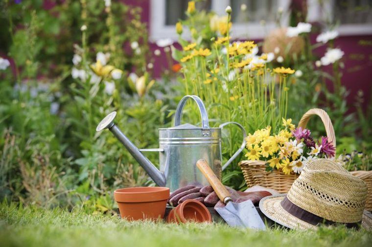 Kako da zaštitite biljke od padavina: Pokrijte ih!
