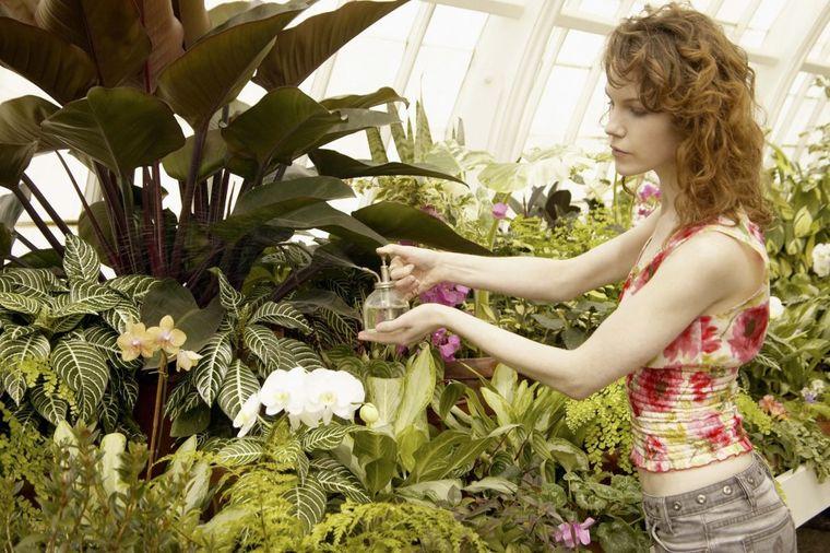 Malo poznate upotrebe sapuna: Odbija insekte od biljaka, ublažava njihove ubode, štiti nokte