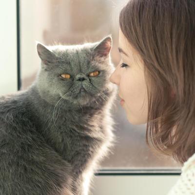 Sindrom Toma i Džerija: Da li i vaša mačka pati od ove bolesti?