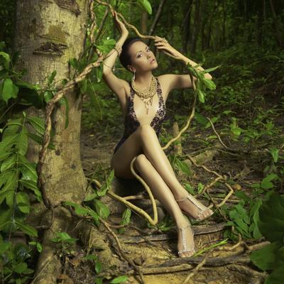 Stablo otkriva kakva ste osoba: Imate li moć izlečenja, kakva vam je intuicija? (FOTO)