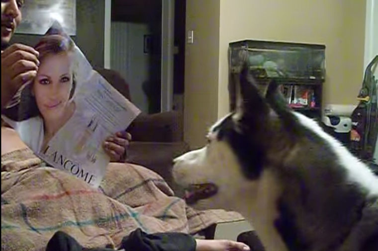 Potpuno neočekivana: Urnebesna reakcija psa kada je ugledao Džuliju Roberts! (VIDEO)