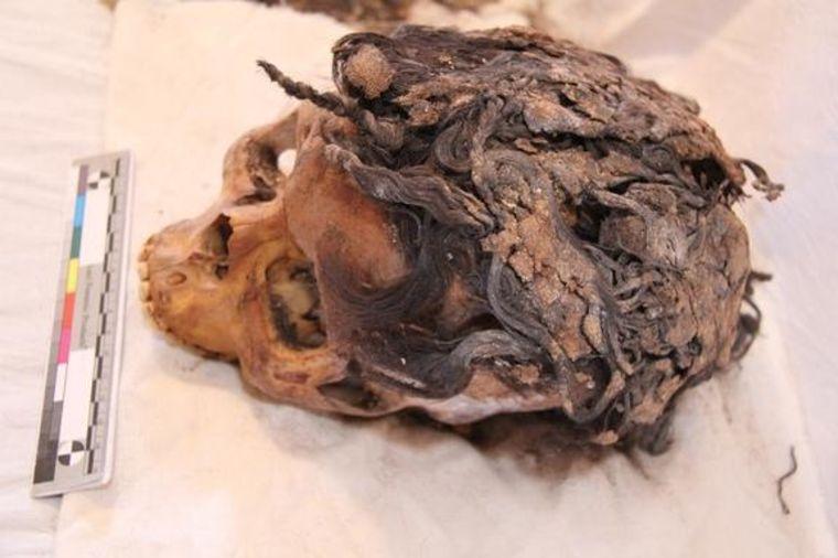 Nadogradnja kose potiče od pre 3 hiljade godina: Pronađena lobanja sa 70 umetaka! (FOTO)