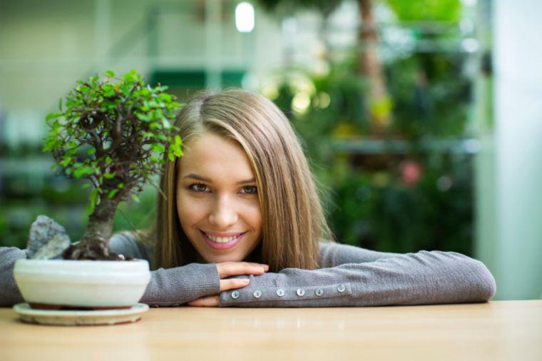 4 pravila za negu sobnih bonsaija: Držite ih na svetlom i toplom, koristite tečno đubrivo