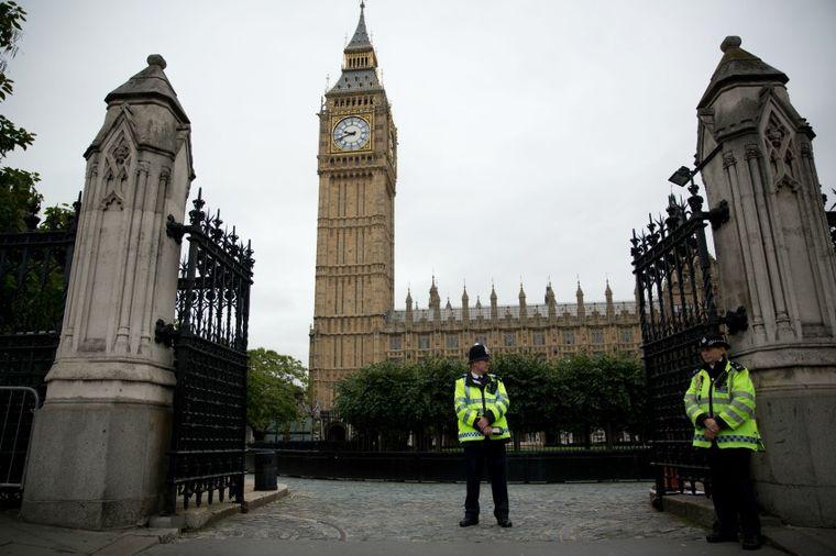 Britanskom parlamentu neophodna armija mačaka da bi se izborili sa sve većom populacijom miševa!