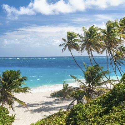 Tropski raj okružen palmama: Sve čari ostrva Barbados (FOTO)