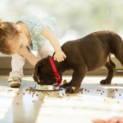 Dobro je imati tvrdoglavo dete: Evo zašto morate da mu dopustite da ostane takvo!