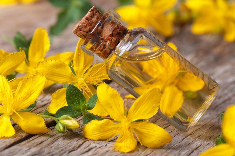 Čista i blistava koža bez pega i bora: Kantarionovo ulje je lek i za rak kože! (RECEPT)