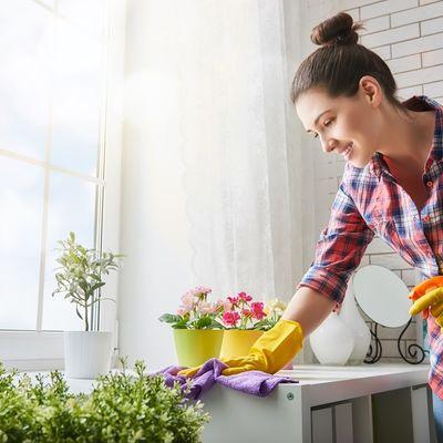 Očistite vlagu i buđ sa zidova zauvek: 5 potpuno prirodnih sredstava!