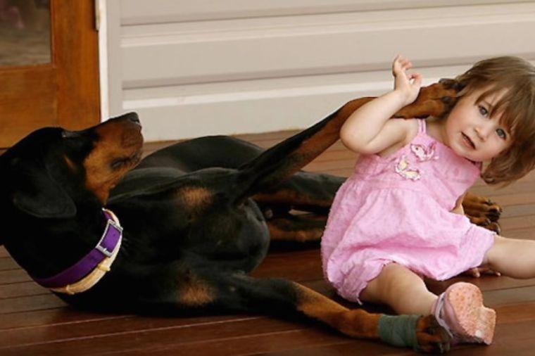 Doberman je bez razloga zgrabio bebu: Njena majka je u sekundi shvatila jezivu istinu! (FOTO)