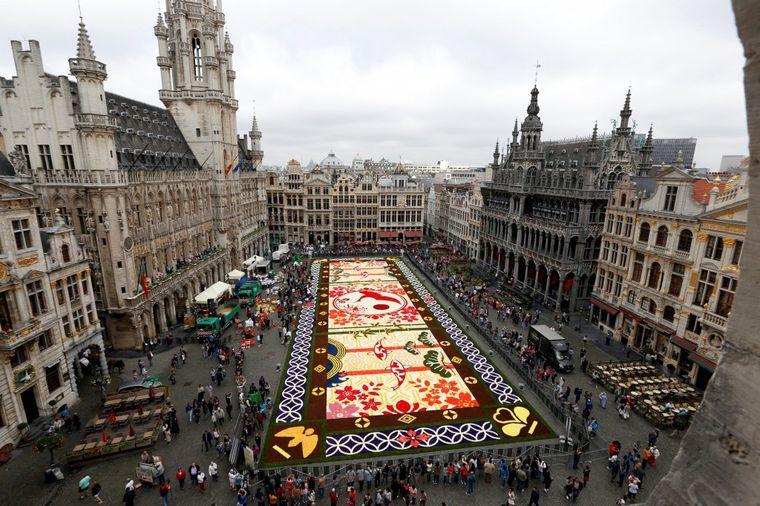 Cvetni tepih u Briselu: Najlepša dekoracija u srcu Belgije!