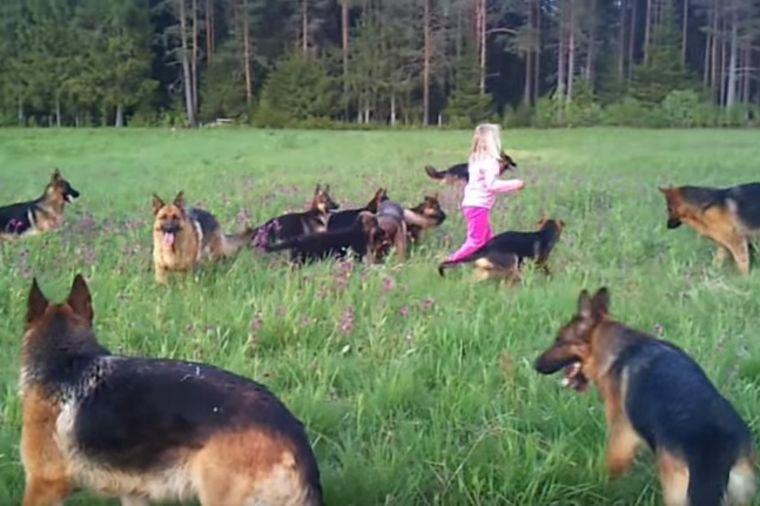 Otac ostavio ćerku sa 14 pasa: Ovakav prizor nije očekivao! (VIDEO)