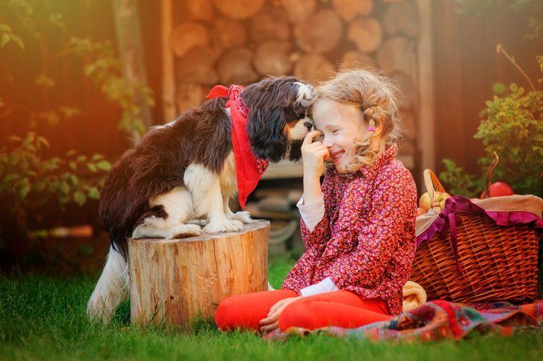 Ako su ti deca zla, ne zaslužuju nasledstvo: Ako su dobra i radišna, nasledstvo im nije potrebno!