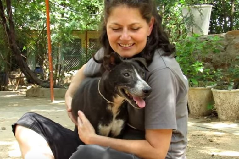Foto: Printscreen Youtube / Animal Aid Unlimited, India