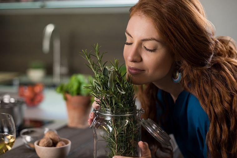 Pročišćava telo, upija štetna zračenja: Ako je unesete u kuću, ova biljka garantuje zdravlje!