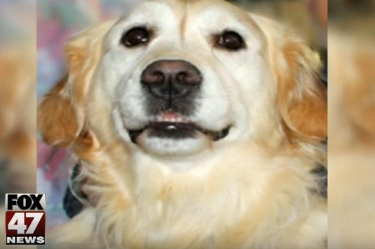 Pas je zavijao puna 24 sata: Kako je životinja spasila vlasnika sa slomljenim vratom! (FOTO)