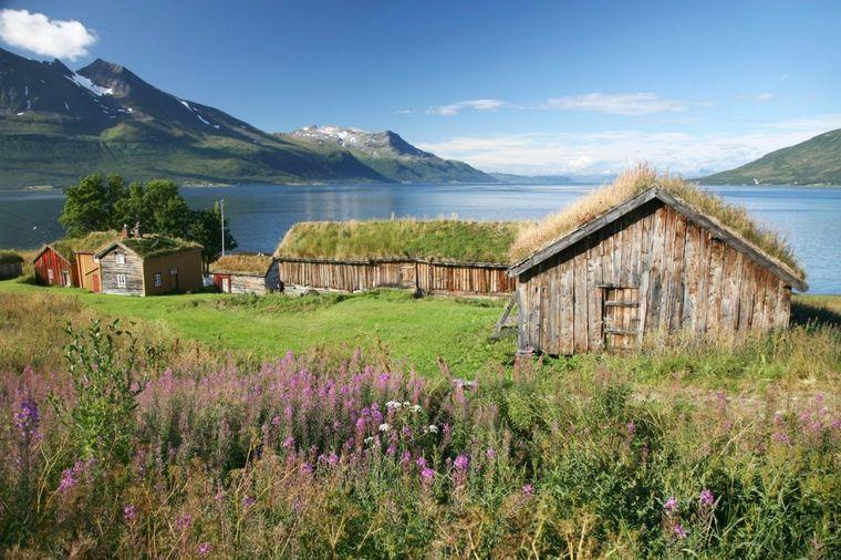 Norveški krovovi od cveća i drveća: Tradicija čuvanja kućne sreće!