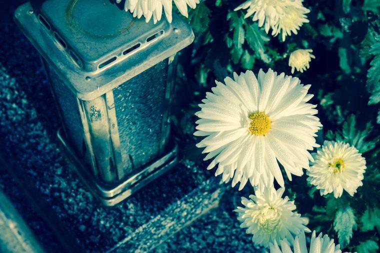 Cveće na groblju