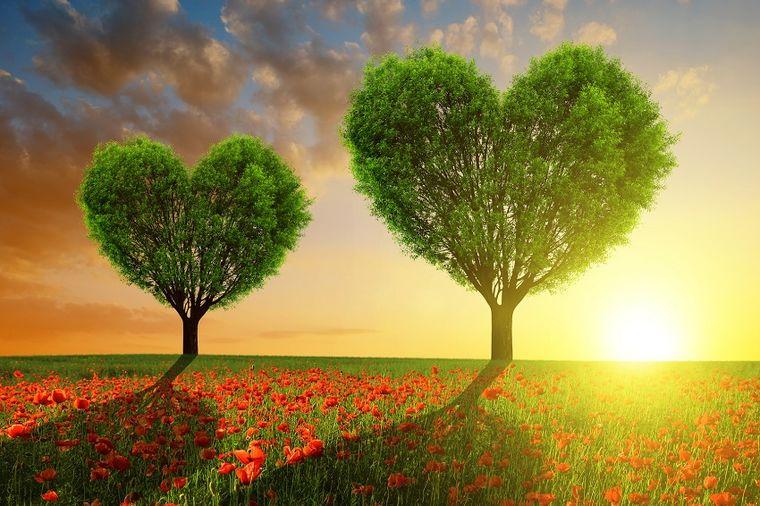 Konačno nam stiže proleće: Najlepši prizori buđenja prirode iz zimskog sna!