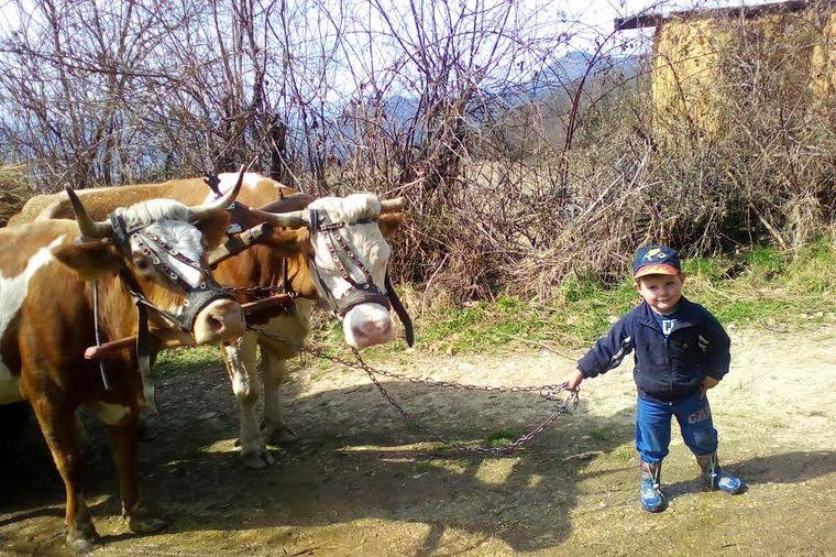 Zdravi kao dren, srce im je čisto i iskreno: Evo zašto su deca iz Azbukovice srećnija od beogradske!