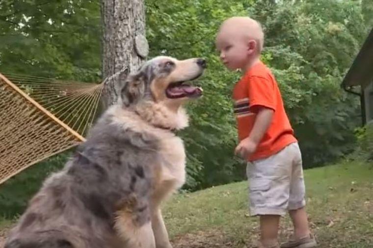 Otac gledao kako pas juri na njegovog sina: U trenutku shvatio jezivu istinu! (VIDEO)