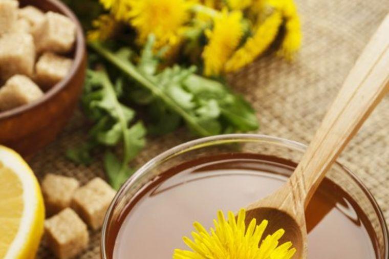 Domaći recept za med od maslačka: Izlečite kašalj i alergije! (RECEPT)