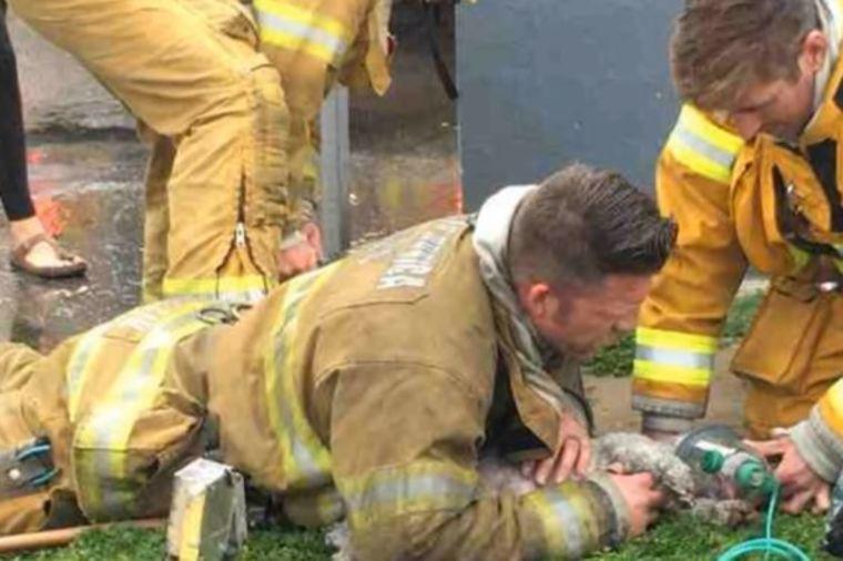 Vatrogasac činio sve da spase psa nastradalog u požaru: Ceo svet mu se divi! (VIDEO)