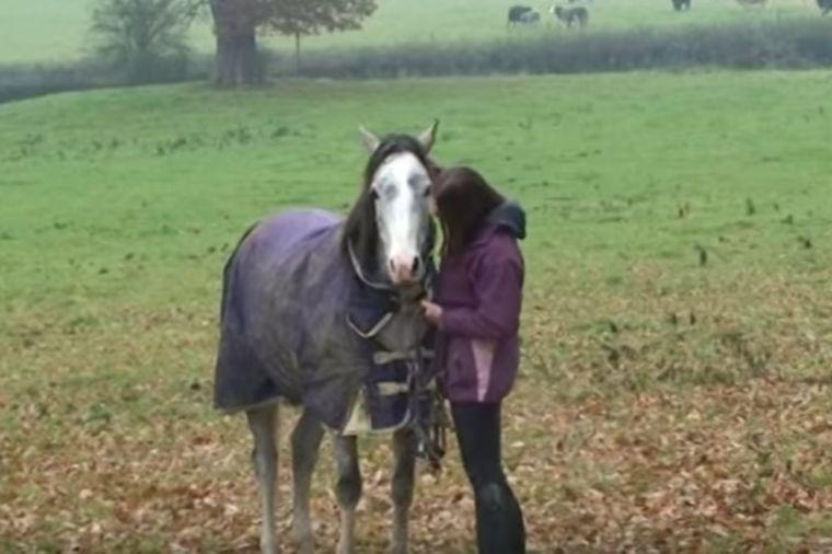 Bila je odsutna od kuće 3 nedelje: Zanemećete zbog reakcije njenog konja! (VIDEO)