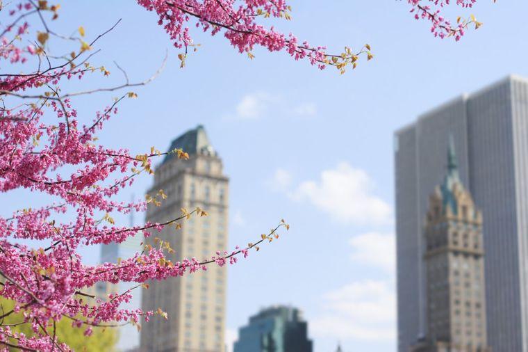 Ovo sigurno niste znali o Njujorku: Mesto koje ne spava ni danju, ni noću! (FOTO)