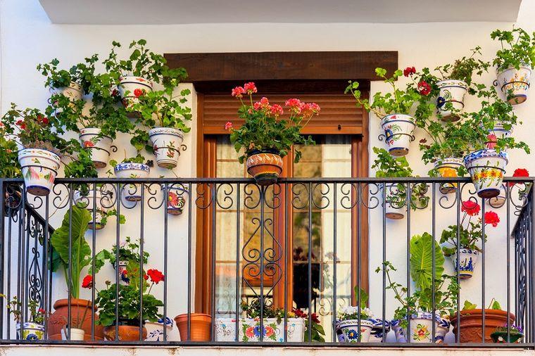 Šta svaka terasa treba da ima: Kombinacije cveća koje provereno uspevaju! (FOTO)