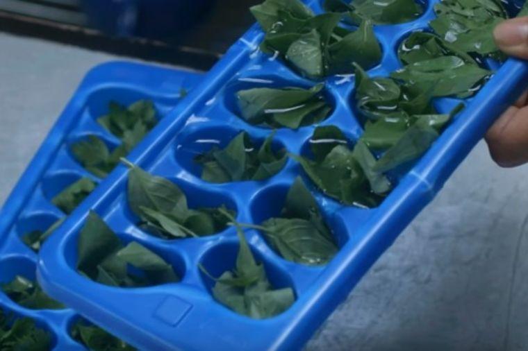 Kako da vam začini uvek budu sveži: Sjajan trik za ukusnu hranu! (VIDEO)