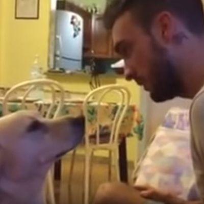 Pas molio vlasnika za oproštaj: Ovo je nešto najdirljivije što ćete videti danas! (VIDEO)