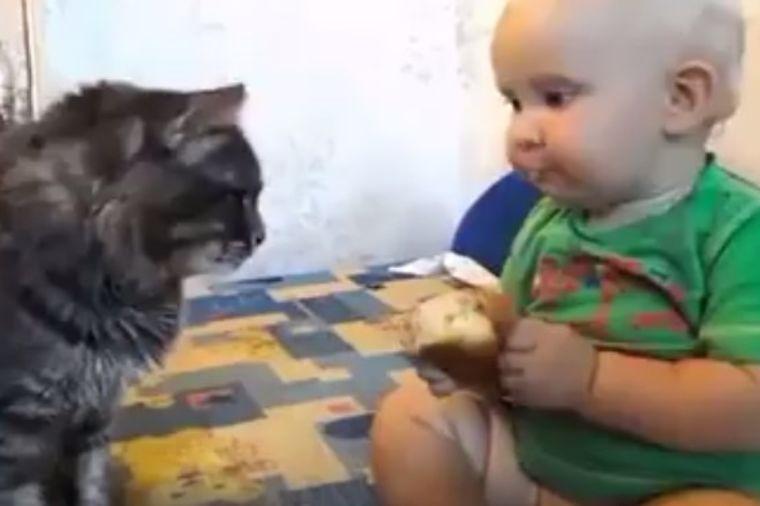 Pola jede, pola maci daje: Nešto najslađe što ćete videti danas! (VIDEO)