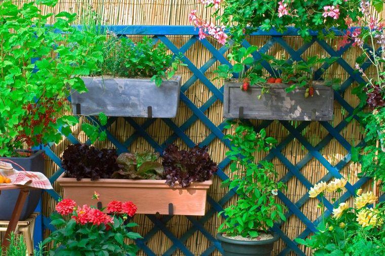 Kako da sami uzgajate voće i povrće u bašti ili na terasi: Najzdravija hrana za vas i vaše najbliže!
