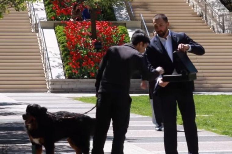 Bogataš nudio vlasnicima 100.000 za psa: Njihove reakcije ostavljaju bez teksta! (VIDEO)