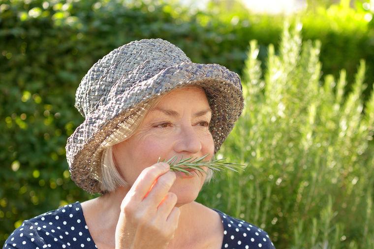 Tera zle duhove, pospešuje zdravlje: Biljka koja se od pamtiveka koristi u kuhinji i kozmetici!
