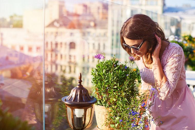 Svaka žena tokom avgusta treba da nabavi ovu biljku: Privlači ljubav i novac, štiti od zla!