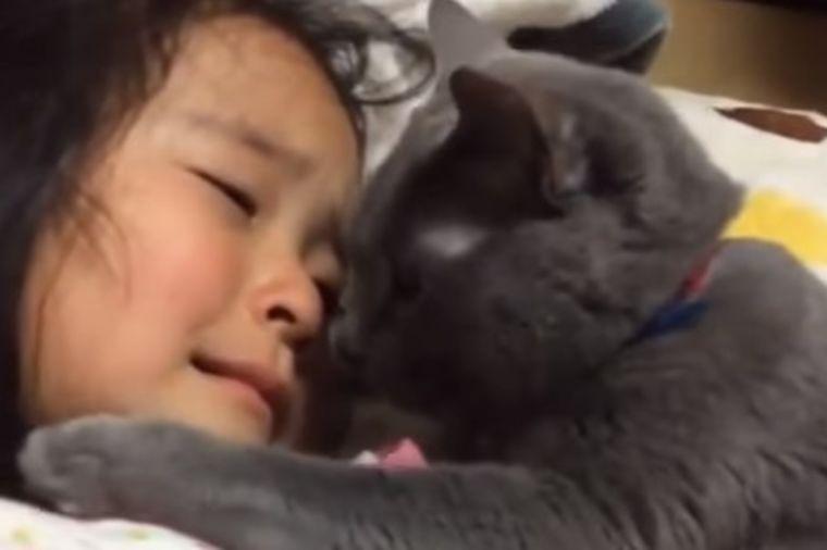 Maca teši uplakanu devojčicu: Ovo je nešto najslađe što ćete videti danas! (VIDEO)