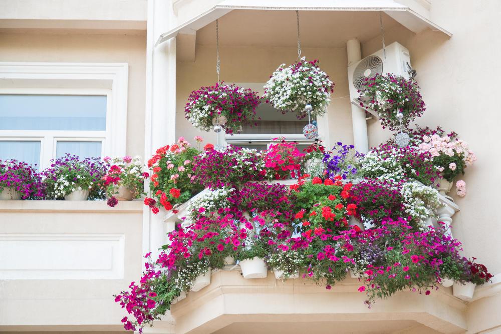 <p>Napravite pravu malu oazu mira u svom domu.</p>