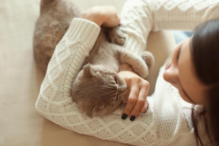 Slikovni rezultat za mačke su lijek za dušu i tijelo: prenose ljubav