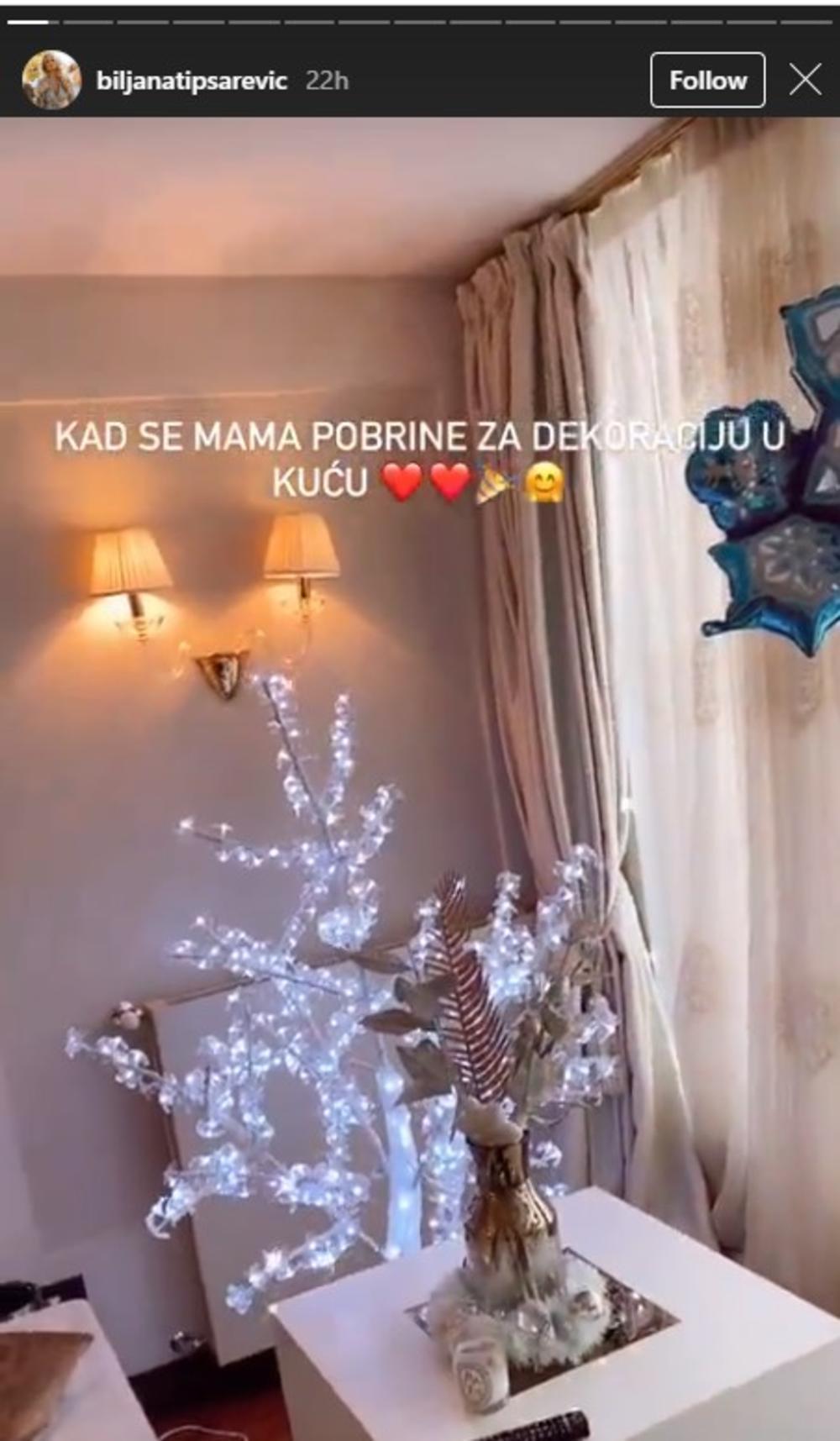 Biljana Tipsarević, Dekoracija doma Biljane Tipsarević