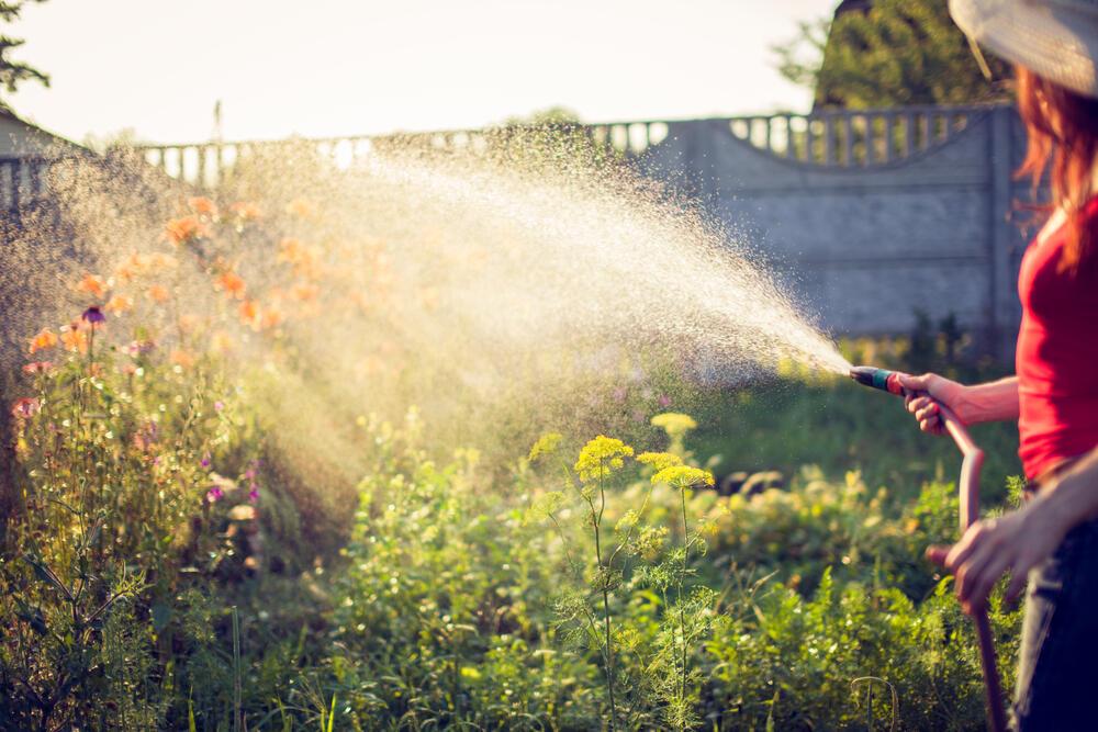 Zalivanje, Zalivanje bašte, Crevo, Voda, Potrošnja vode