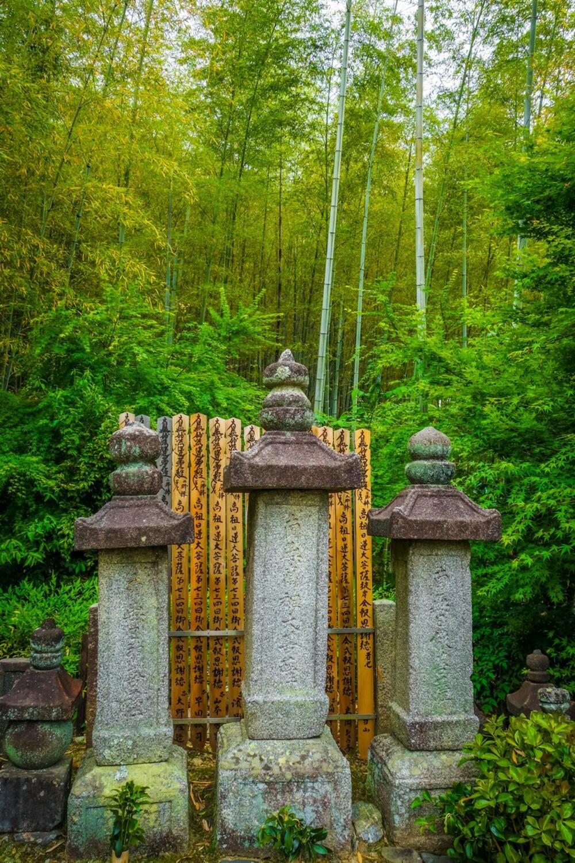 """<p>Kroz našu galeriju """"prošetajte"""" prelepom bambusovom šumom u Japanu, koja se smatra istinskim čudom prirode</p>"""